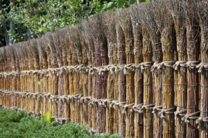 גדר לגינה = פרטיות